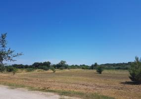 Fažana, Istarska županija, Hrvatska, ,Građevinsko zemljište,Prodaja,1014