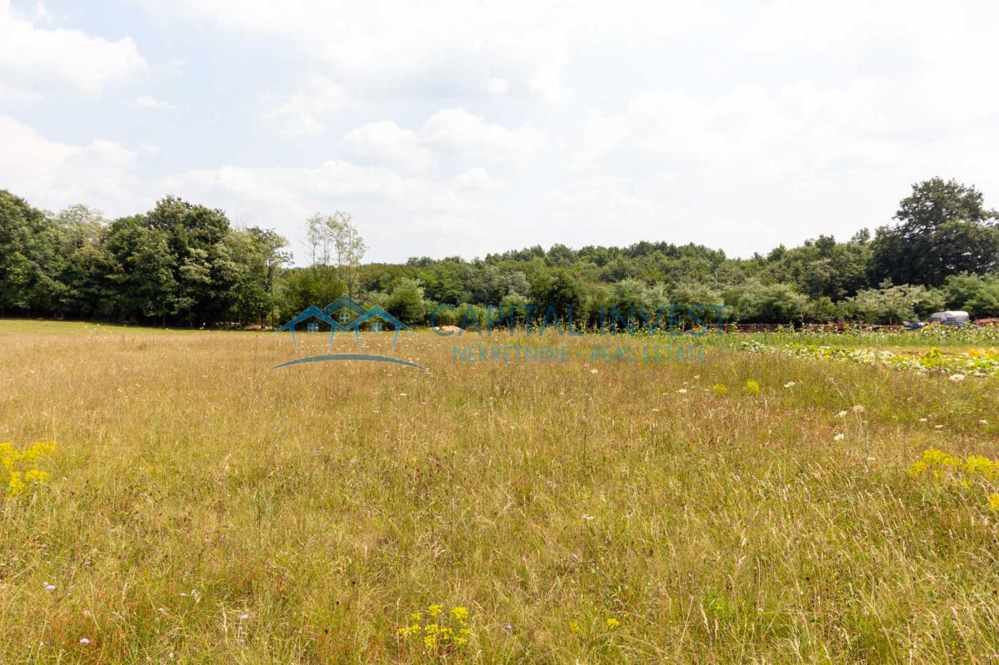 Vodnjan, Istarska županija, Hrvatska, ,Građevinsko zemljište,Prodaja,1029