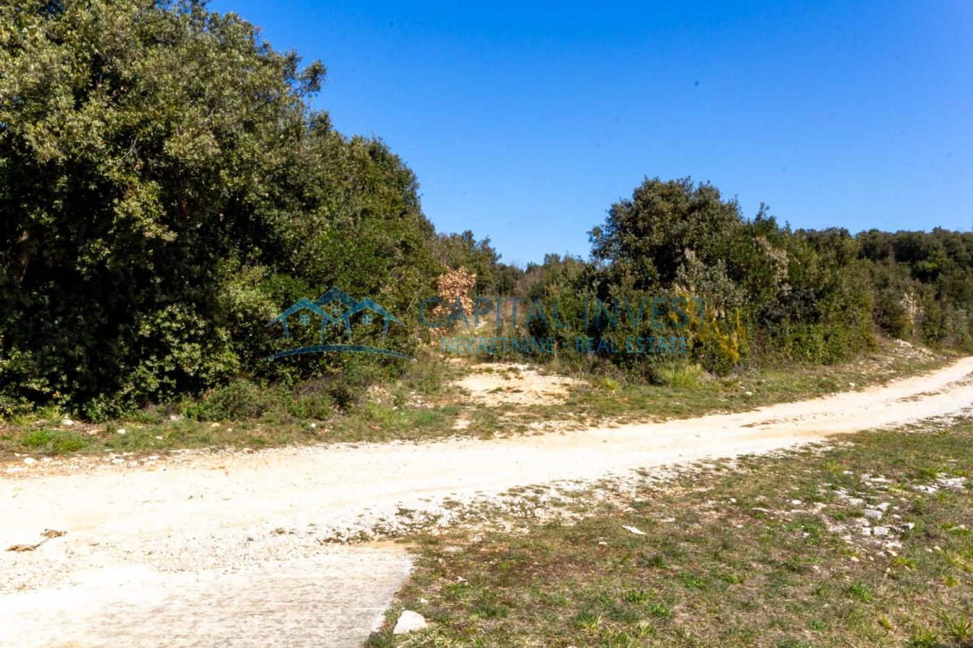 Pavićini, Istarska županija, Hrvatska, ,Građevinsko zemljište,Prodaja,1040
